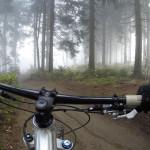 Der Schwarzwald als Trend-Destination