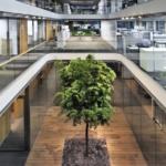 80.000 Euro für krebskranken Mitarbeiter