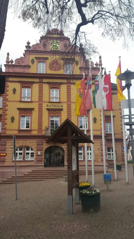 Das Rathaus Herbolzheim