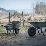Bauernhof: Harte Arbeit am Idyll
