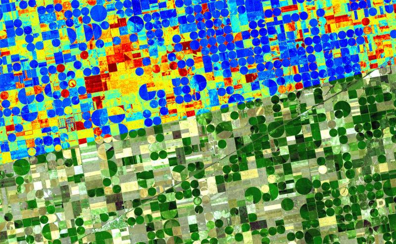 Aus dem Weltall für die Landwirtschaft: Das Freiburger Start-up ConstellR