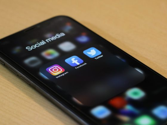 netzwerk südbaden, social media